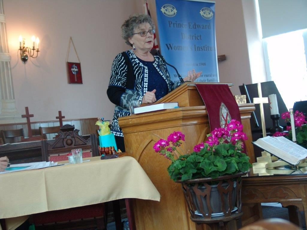 2019 PEDWI District Annual Guest Speaker Debbie McDonald Moynes, Executive Director Community Care for Seniors